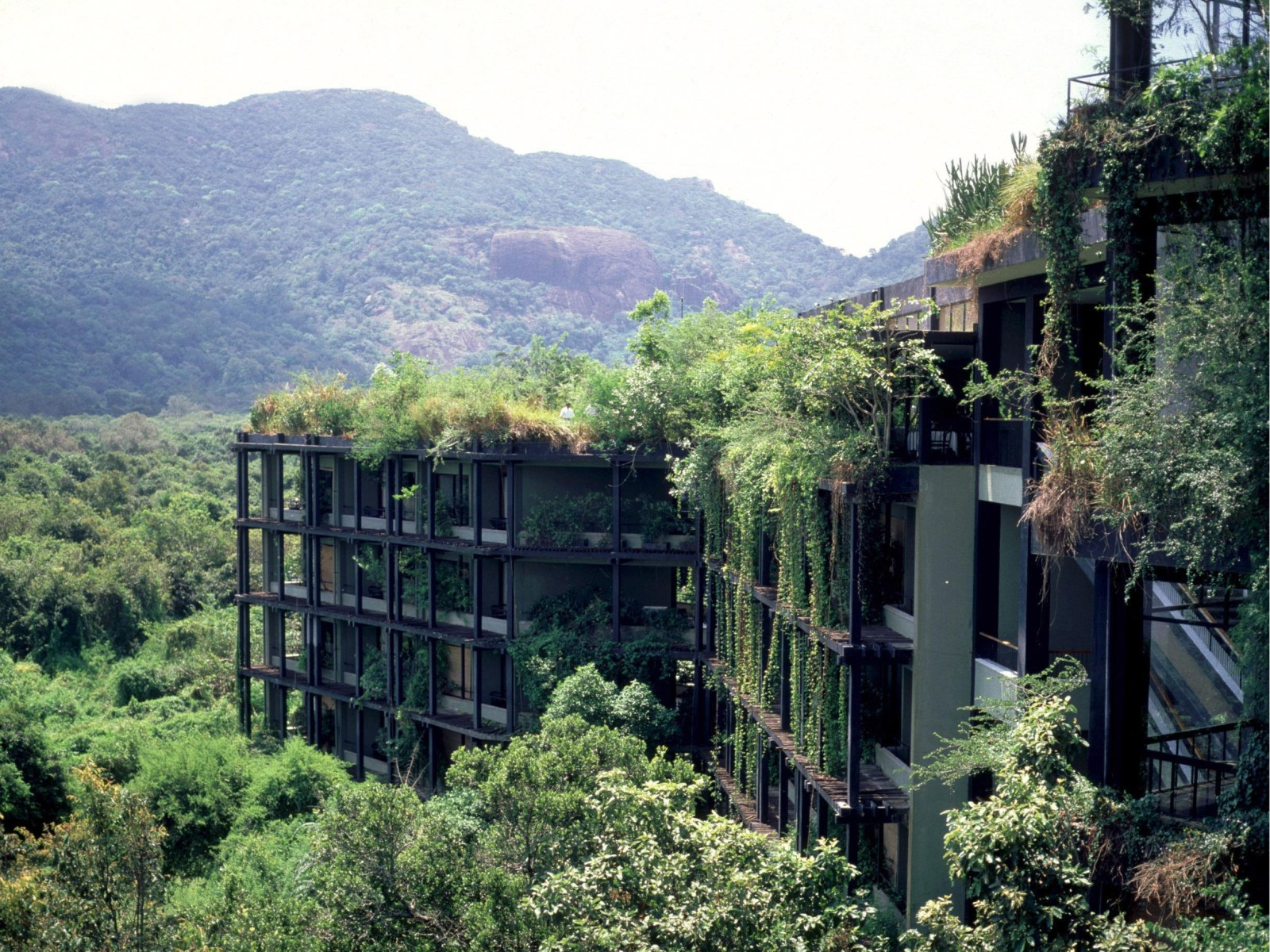 nature abandoned architecture buildings modern sri hotel lanka forest overgrowth jungle building exterior taking 7chan kandalama balcony src bawa wallpapers